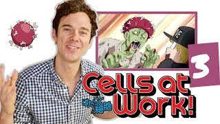 """Real DOCTOR reacts to CELLS AT WORK! // Episode 3 // """"Influenza"""""""