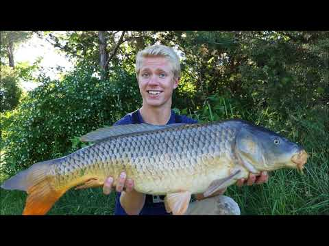 Bank Fishing Simple Rigs for GIANT Carp