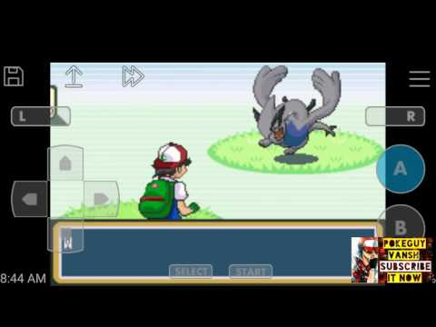 Pokemon Ash Gray Lugia,OH HO,Celibi Cheat