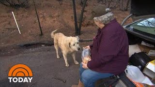Weeks After Deadly Wildfire In Paradise, Woman Reunites With 2 Dogs | TODAY