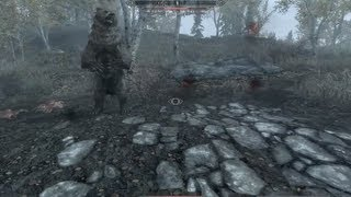 Skyrim Gameplay - Saving a Cave Bear from Imperial and Stormcloak Soldiers feat. Frostbite Spider
