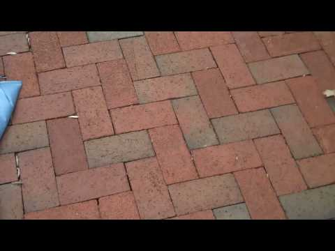 Brick Patio Installation by Chris Orser Landscaping