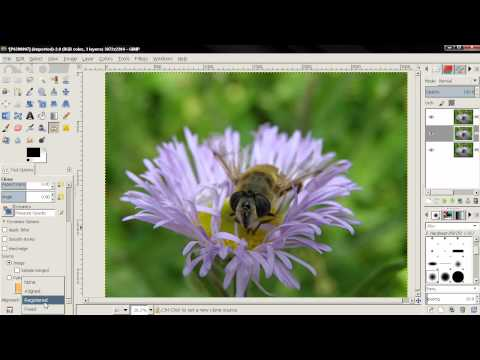 Sharpen Image - GIMP 2.8 tutorial