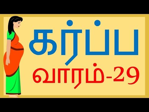 Pregnancy  Tamil   Week by Week   Week 29