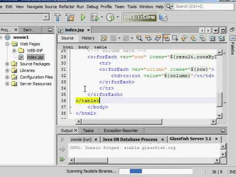 How To Create Dynamic Website using MySQL and Netbeans