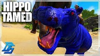 ark austroraptor Videos - 9tube tv