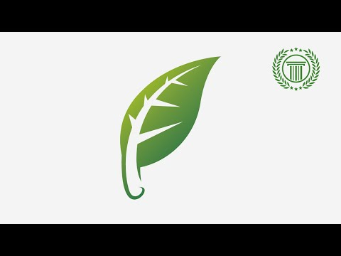 tutorial adobe illustrator cs6 for beginners | how to make leaf shape use pen tool