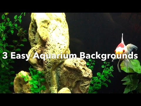 Aquarium Backgrounds: 3 Easy Options