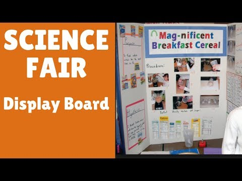 Prepare for Science Fair  ( Setting up your Show-board )