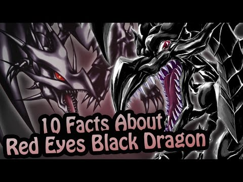 10 Facts About The Red Eyes Black Dragon You Absolutely Must Know! (Yu-Gi-Oh!)
