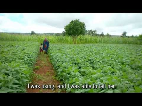 Tanzania Smallholder Farmers Improving Crop Yields