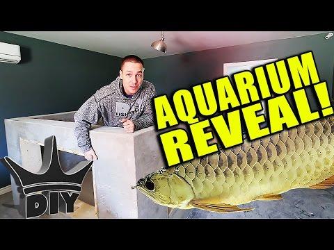 FINALLY! The 2,000 gallon aquarium reveal!