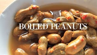 Boiled Peanuts Taste Test Whatcha Eating