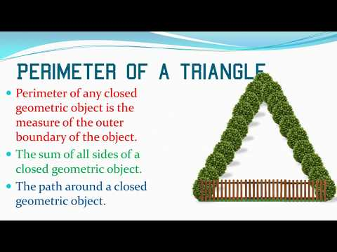 Missing Variables and the Perimeter of a Triangle