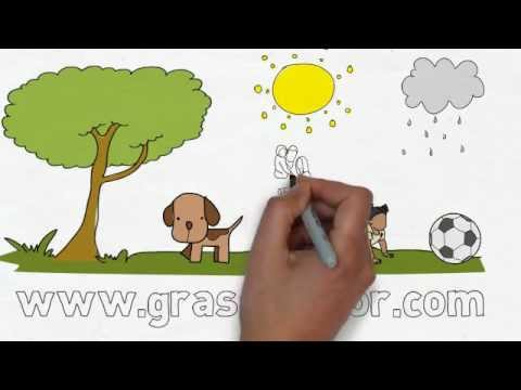 Artificial Grass - Get Artificial Grass FREE Samples in The UK