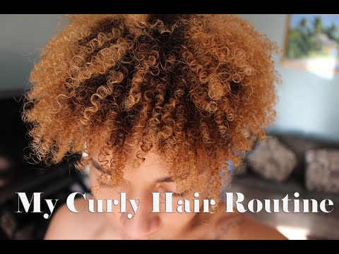 How To Get Bouncy Curls | My Curly Hair Routine