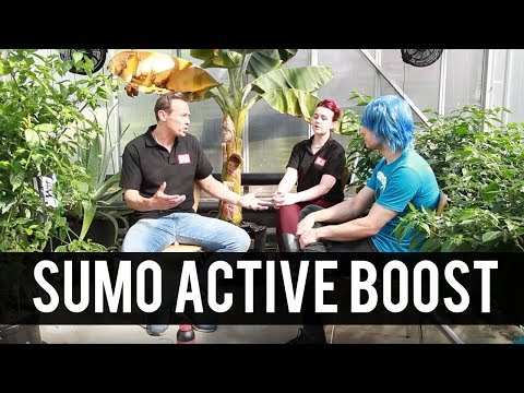 One Stop Road Trip: Introducing Sumo Active Boost
