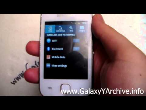 Galaxy S4 Settings for Samsung Galaxy Y GT-S5360 (no root)