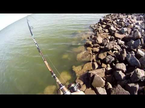 STRIPED BASS FISHING CALIFORNIA,,,,using my Dobyns DX 783 SF Rod & my GoPro HD Helmet Camera