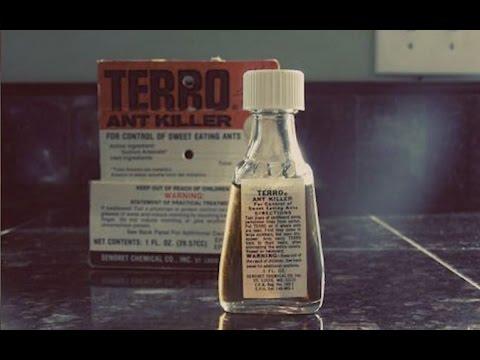The History of TERRO
