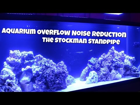 Aquarium Overflow Noise Reduction | Stockman Standpipe