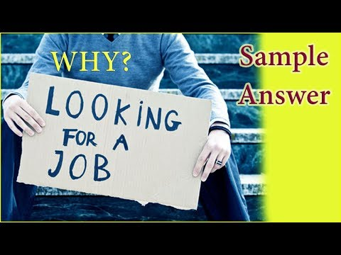 Why Are You Looking For a Job - Sample Answer