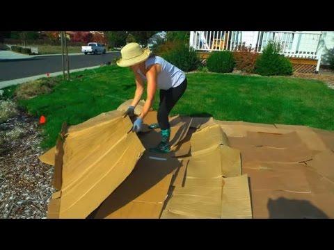 Convert Your Lawn by Sheet Mulching