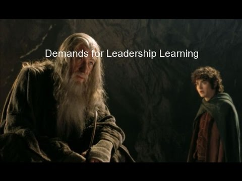 Demands for Leadership Learning