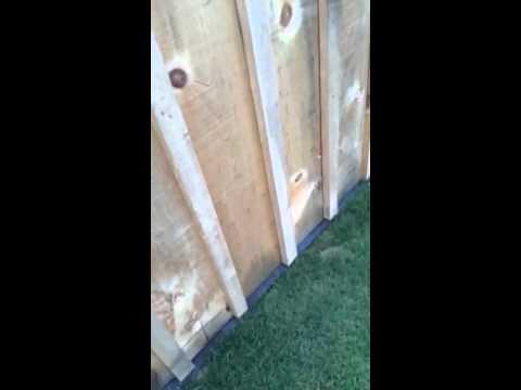 Grass prevention under fences