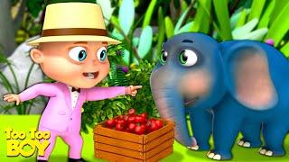 Jungle Camp Episode   TooToo Boy   Cartoon Animation For Children   Funny Comedy Kids Shows