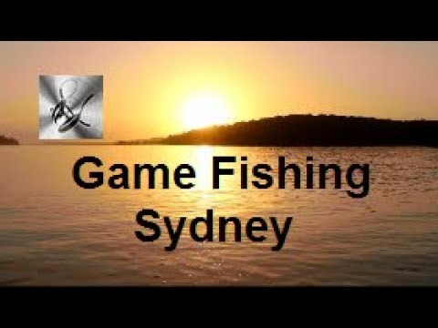 Game Fishing Sydney | The Hook and The Cook