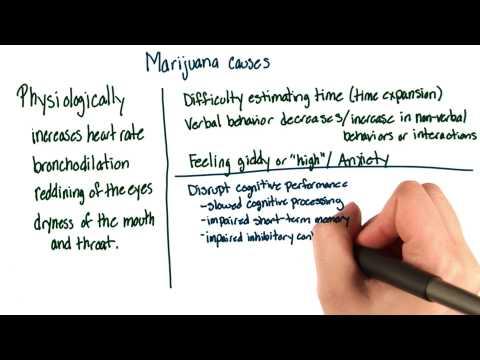 Marijuana effects - Intro to Psychology