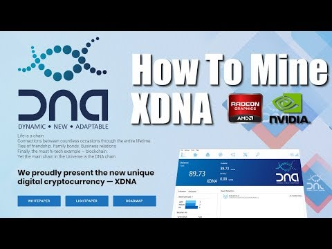 How To Mine Keccak Algo Coins - Dual Mining Eth + Keccak Algo AMD & Nvidia GPUs