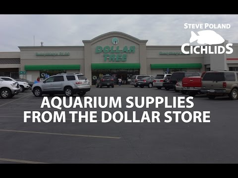 Aquarium Supplies from the Dollar Store