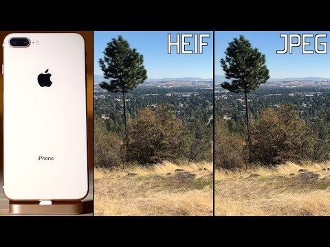 Does HEIF in iOS 11 kill iPhone photo quality? HEIF vs JPEG Compared