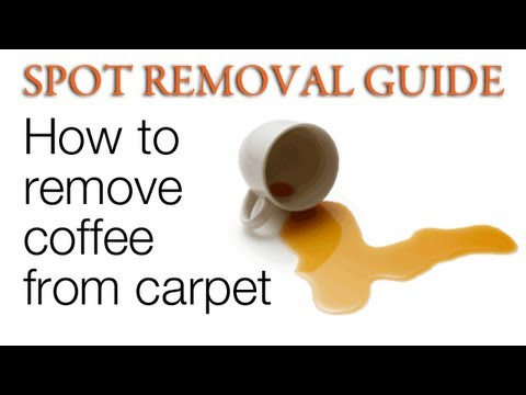 How to get Coffee Stains out of Carpet | Spot Removal Guide
