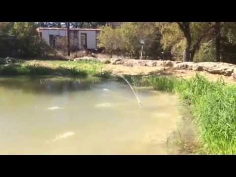 A Simple Pond Fountain for Under 25 Bucks
