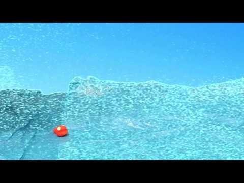 Fish Fight/pixelpandas.org