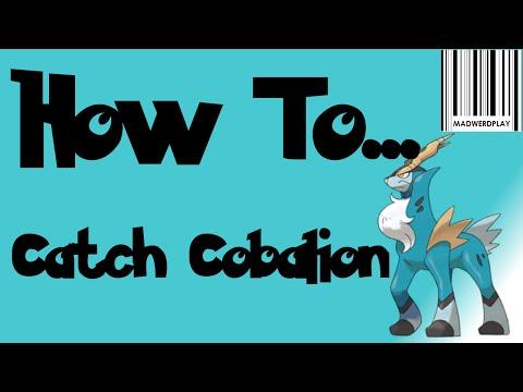 How to Catch Cobalion Pokemon ORAS