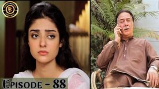 Haal-e-Dil - Episdoe 88 | Top Pakistani Dramas | ARY Zindagi