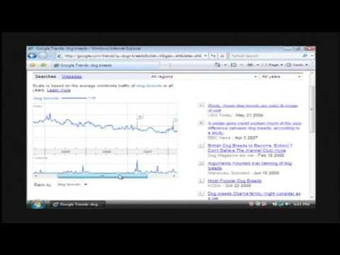 Computer & Internet Help : How to Create a Popular Website