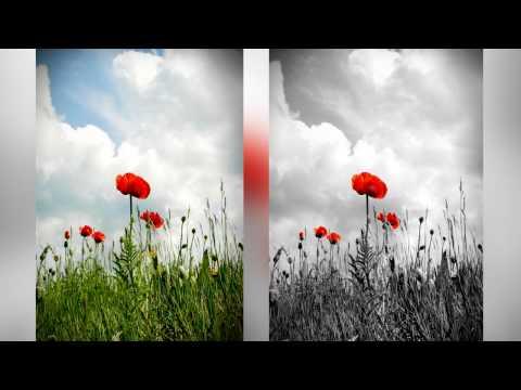 Photoshop Tutorial - Spot Color B&W