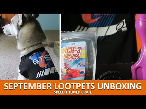 SEPTEMBER LOOTPETS UNBOXING | September 2016 Speed Theme