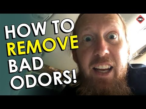 Bad Smell in Car | How to Get Rid of Odors in Your Car and Crawl Space