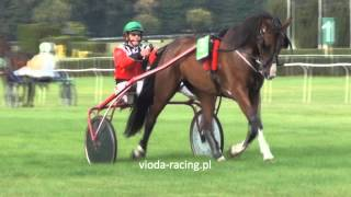 Gon. VIII - 15.09.2012 - Lera de Ba (Eros du Rocher - Gentille Violine) - kłusaki