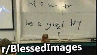 r/BlessedImages | How To Be A Good Boy 101.