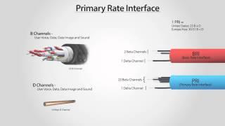 What Is PRI? - Primary Rate Interface (ISDN PRI)