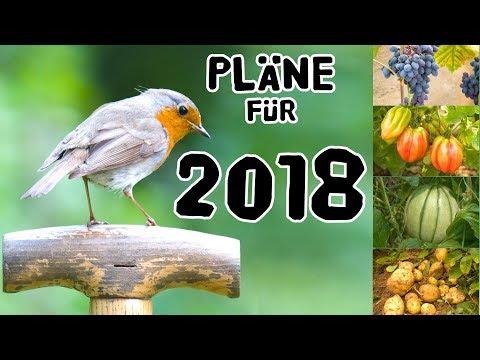 Pläne für 2018 +  Best of 2017 in Outtakes