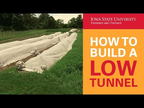 How to Build a Low Tunnel