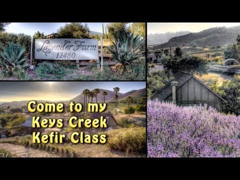 Keys Creek Kefir Class
